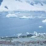 Homeward bound; finding gender equality in Antarctica