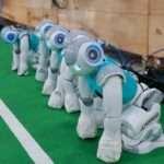 UNSW robots