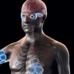 The bionic body