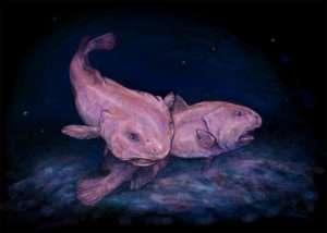 blobfish scary bugs