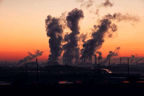 In-demand jobs, environmental health officer