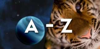 The A-Z STEM careers list
