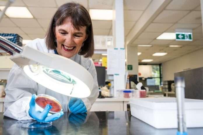 Professor Amanda Leach menzies health